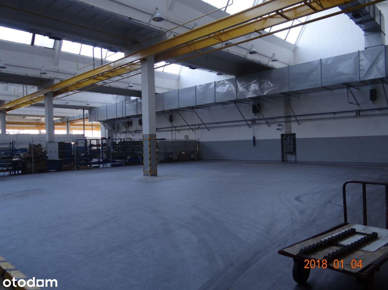 Hala/Magazyn, 2 000 m², Wrocław