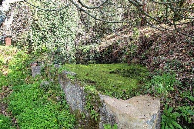 Quintas e herdades para comprar, Monchique - Foto 7