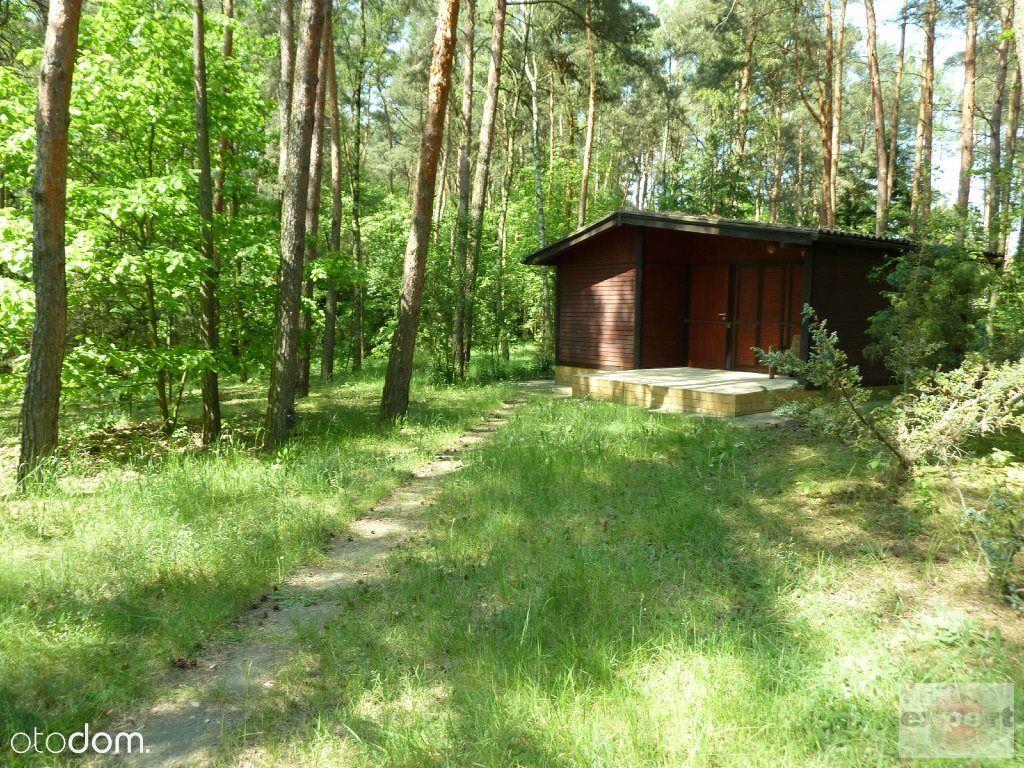 Działka, 963 m², Bechcice-Kolonia