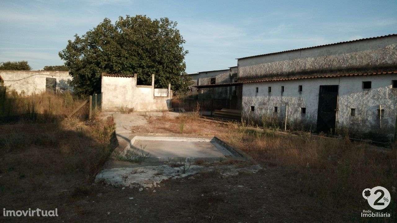 Quintas e herdades para comprar, Palmela, Setúbal - Foto 12