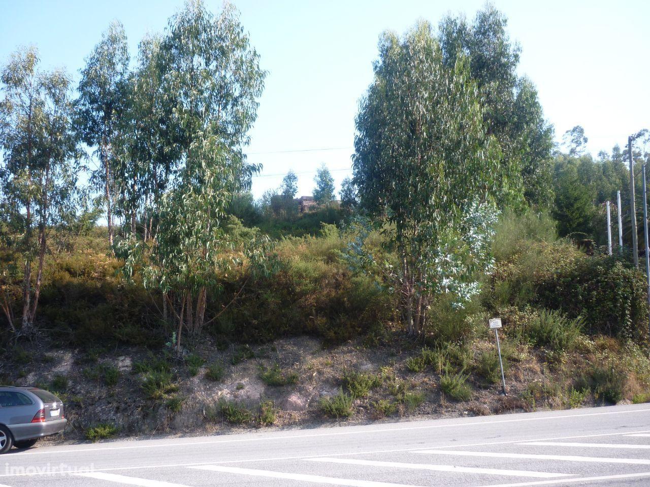 Terreno para Comércio ou Habitação - À Estrada Nacional 15