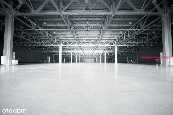 Hala/Magazyn, 1 850 m², Katowice