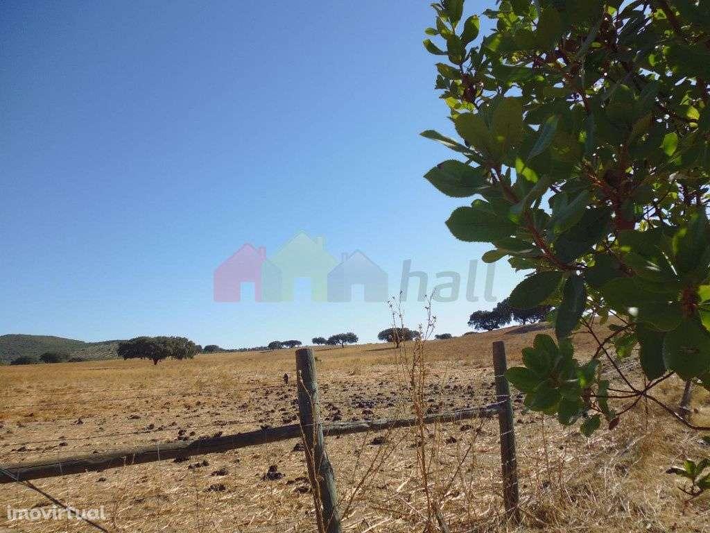 Quintas e herdades para comprar, Vila Verde de Ficalho, Beja - Foto 17