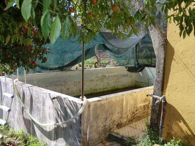 Quintas e herdades para comprar, Fataunços e Figueiredo das Donas, Viseu - Foto 12