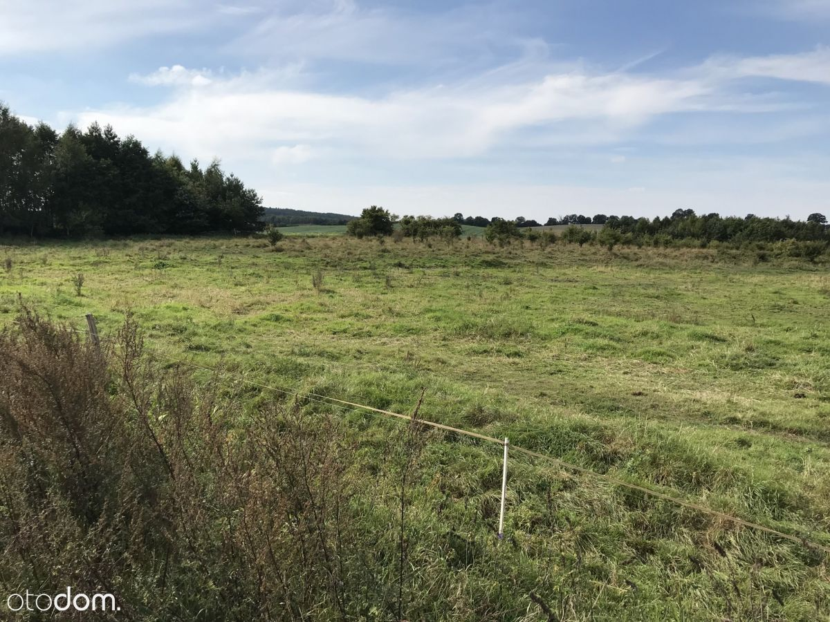 Działka inwestycyjna 1,290 ha Rębielcz