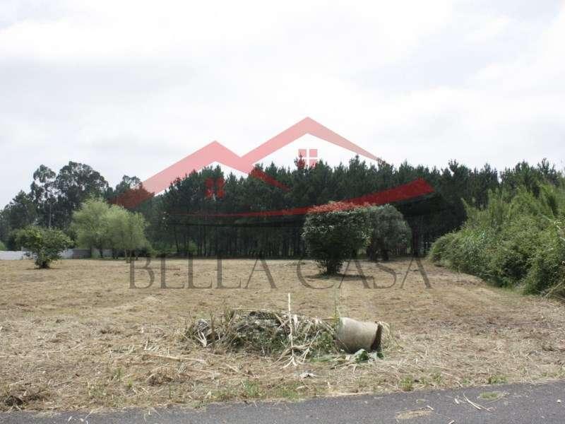 Terreno para comprar, Cantanhede e Pocariça, Cantanhede, Coimbra - Foto 2