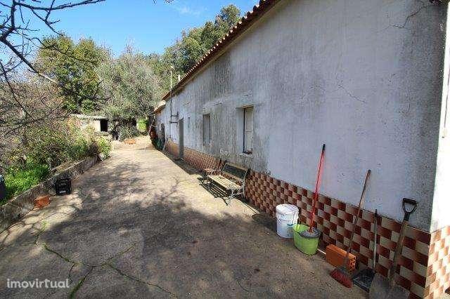 Quintas e herdades para comprar, Monchique - Foto 3