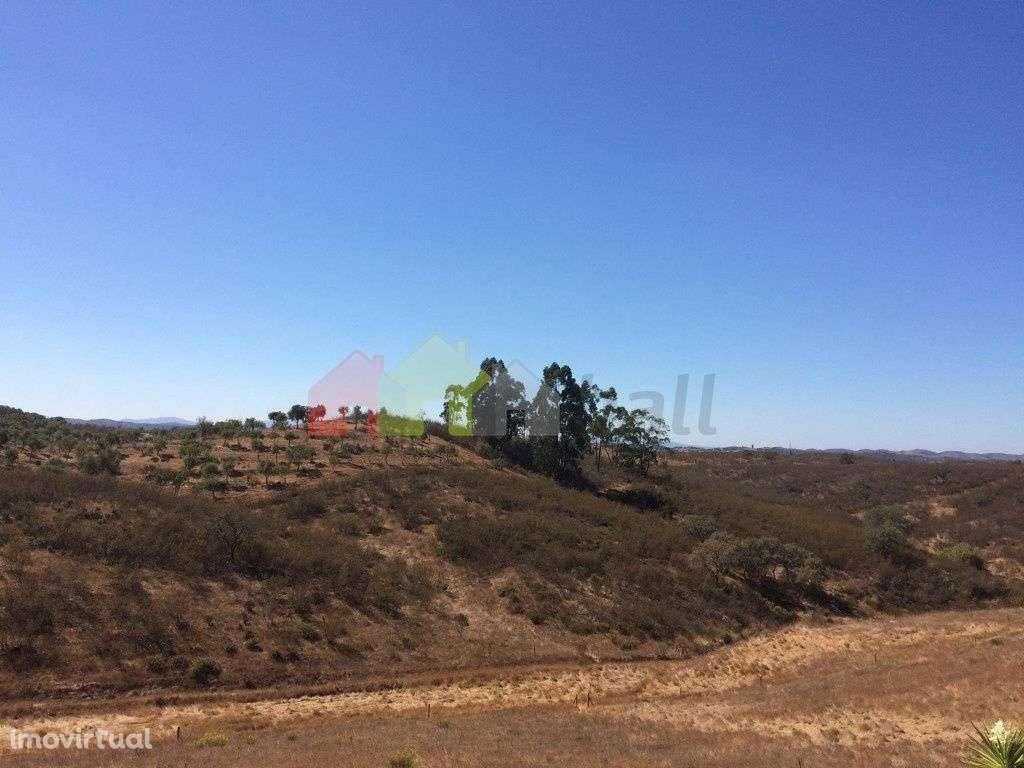 Quintas e herdades para comprar, Santana da Serra, Beja - Foto 13