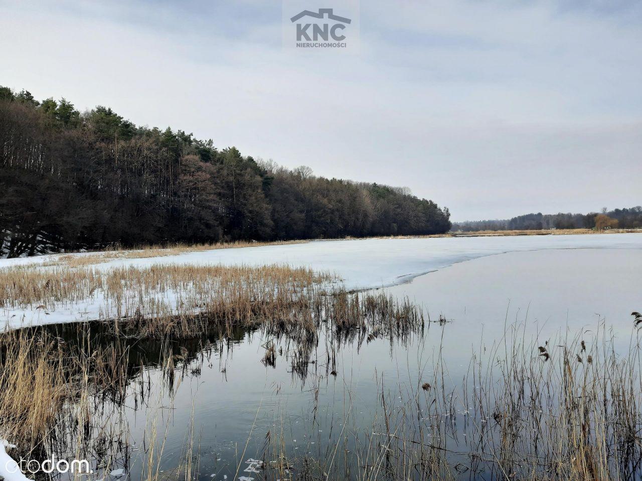 Staw rybny 4,62 ha, Pilaszkowice, lubelskie