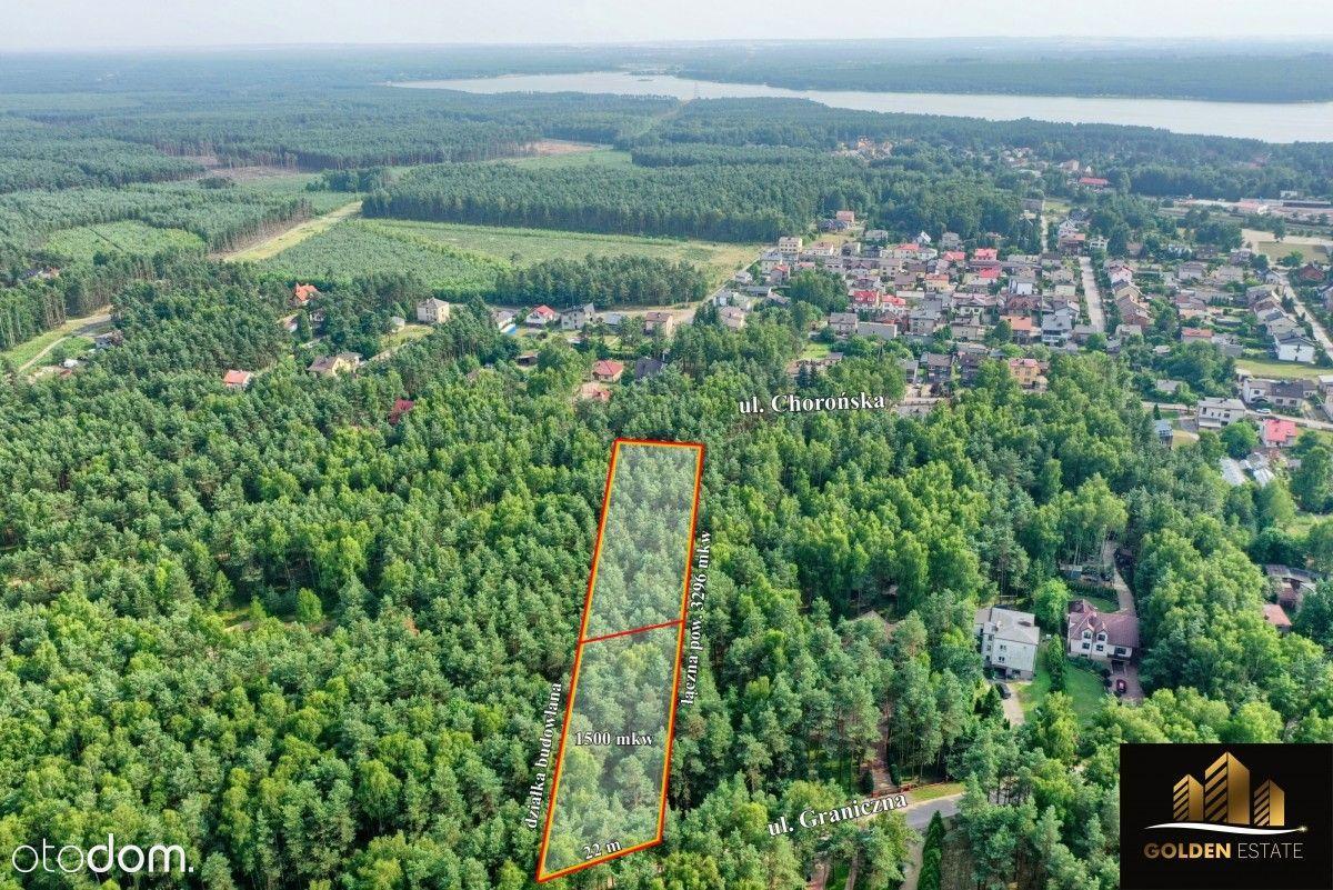 Działka na Jurze Krakowsko- Częstochowskiej