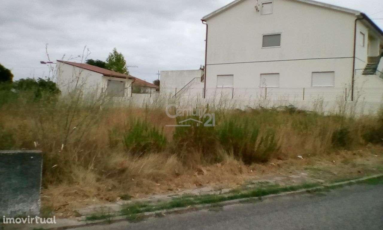 Terreno para comprar, Riachos, Santarém - Foto 3