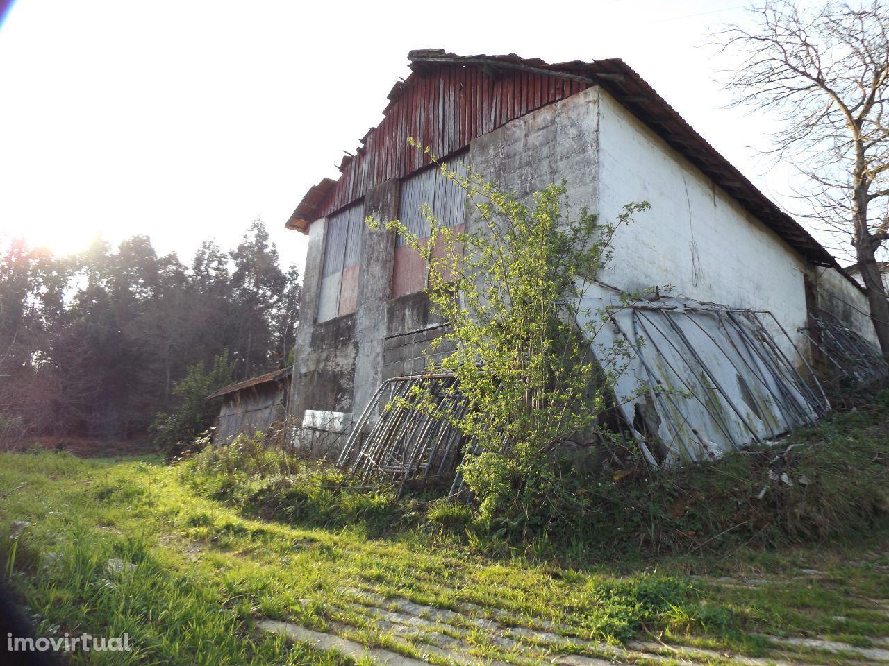 Terreno com 18500m2 em Felgueiras RÚSTICO/URBANO