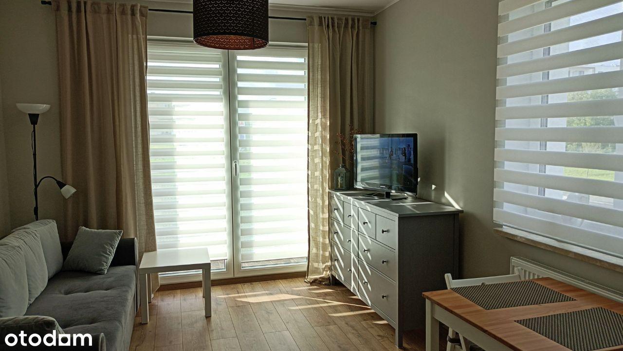 3 pokojowe mieszkanie na wynajem