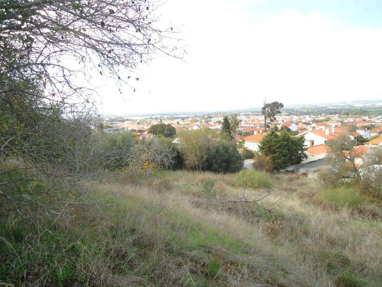 Terreno para comprar, Quinta do Anjo, Setúbal - Foto 12