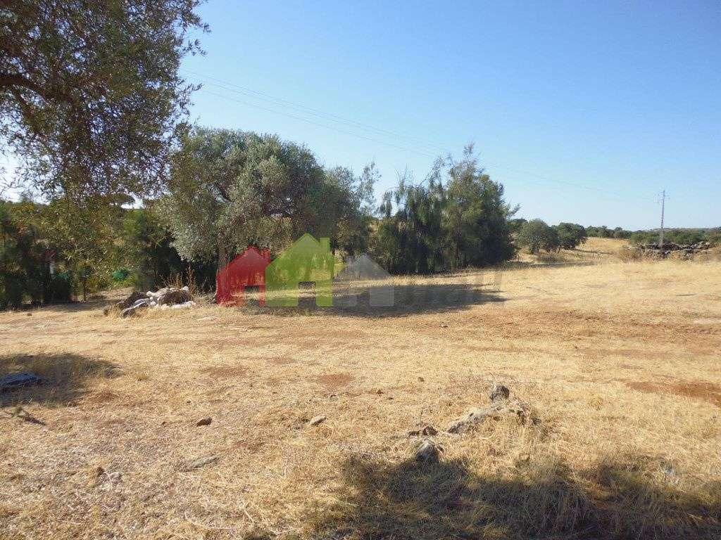 Quintas e herdades para comprar, Vila Verde de Ficalho, Beja - Foto 13