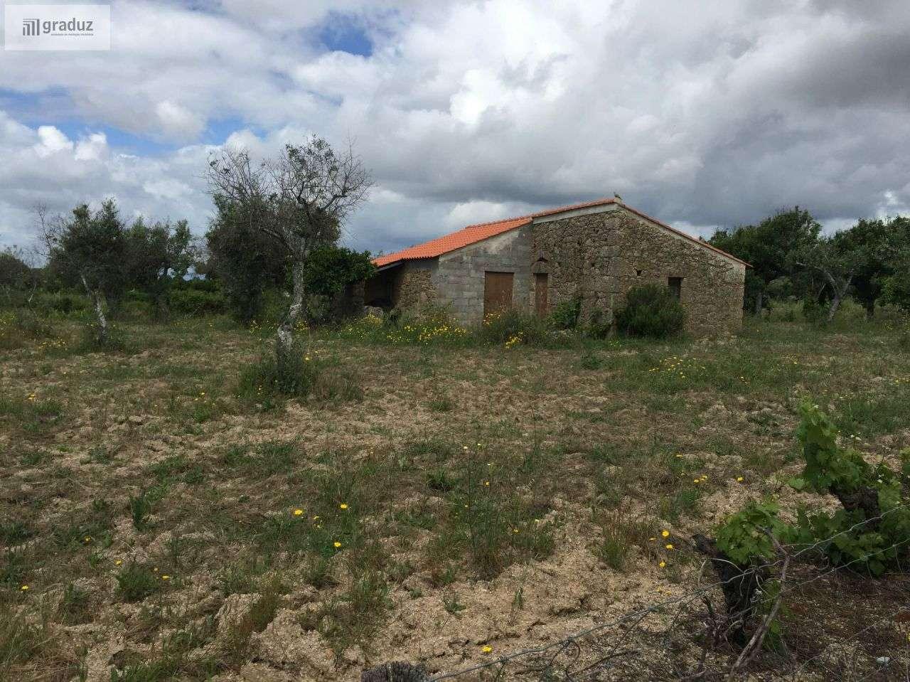 Quintas e herdades para comprar, Lardosa, Castelo Branco - Foto 3