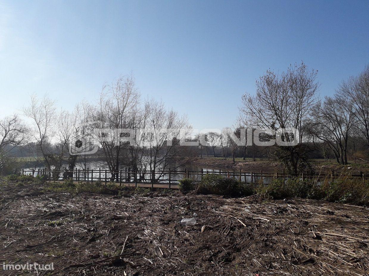 Terreno para comprar, Albergaria-a-Velha e Valmaior, Albergaria-a-Velha, Aveiro - Foto 12