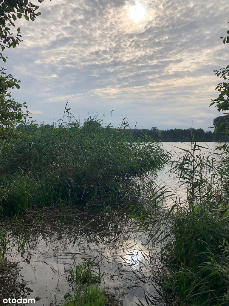 Działka z linią brzegową jeziora Konotopie (Kikół)