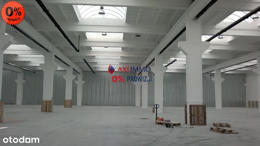 Hala/Magazyn, 1 300 m², Gądki