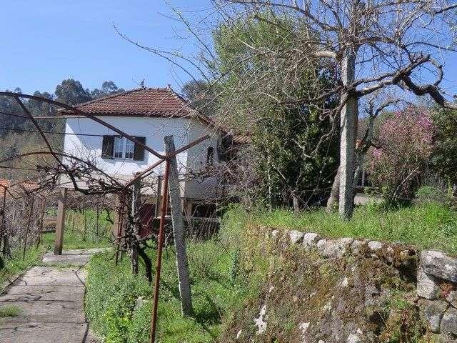 Quintas e herdades para comprar, Fataunços e Figueiredo das Donas, Viseu - Foto 7