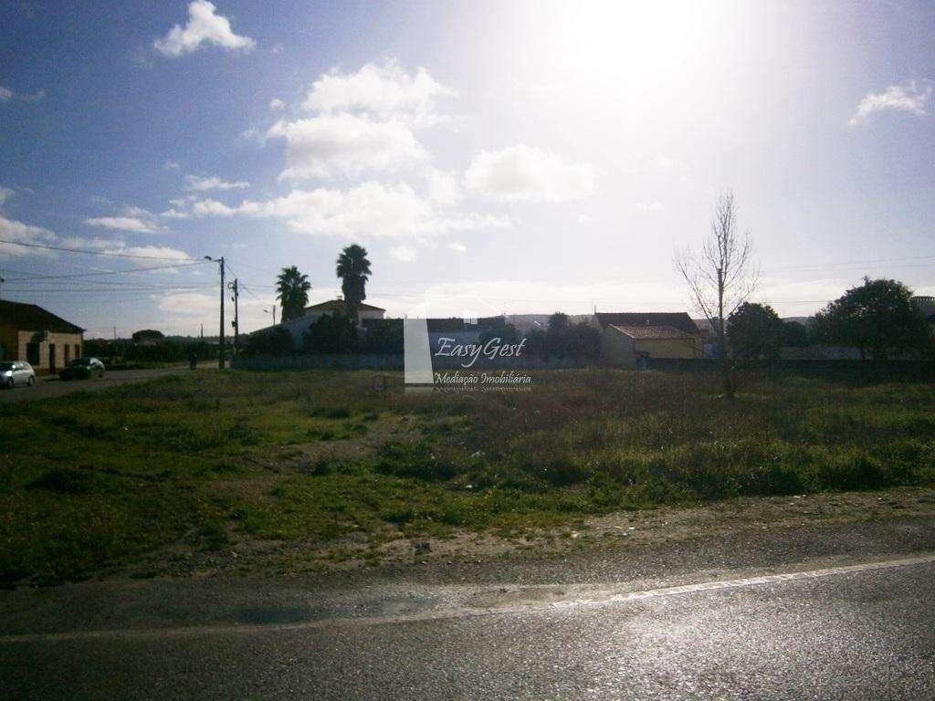 Terreno para comprar, Fazendas de Almeirim, Santarém - Foto 4