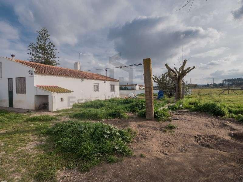 Quintas e herdades para comprar, Pinhal Novo, Palmela, Setúbal - Foto 2
