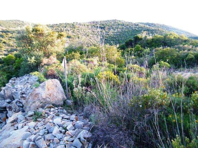 Terreno para comprar, Quelfes, Faro - Foto 4