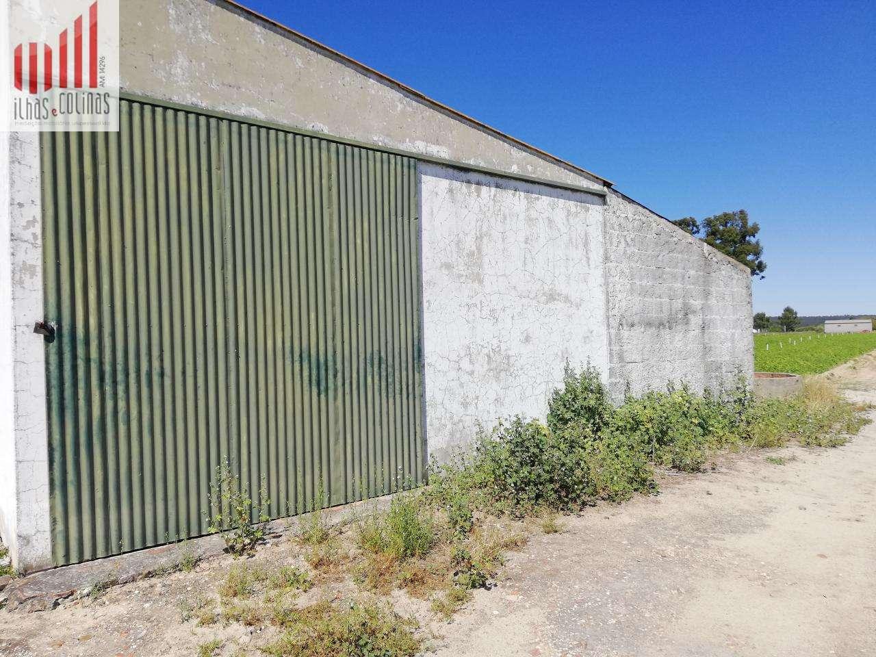 Quintas e herdades para comprar, Salvaterra de Magos e Foros de Salvaterra, Santarém - Foto 17
