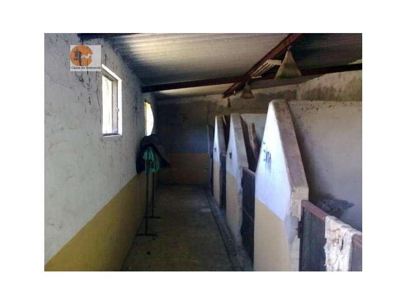 Quintas e herdades para comprar, Rua de Solmar - Quintinhas, Charneca de Caparica e Sobreda - Foto 8