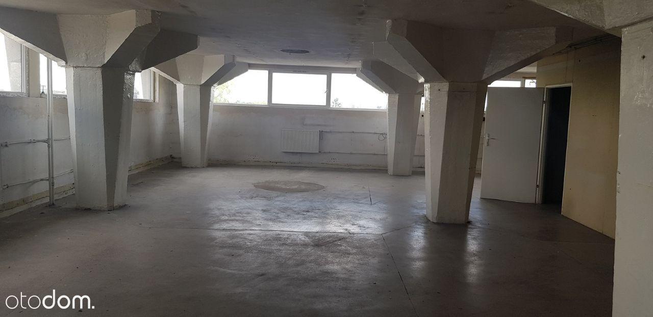 Hala 221m kw. , 3 piętro Górczyn