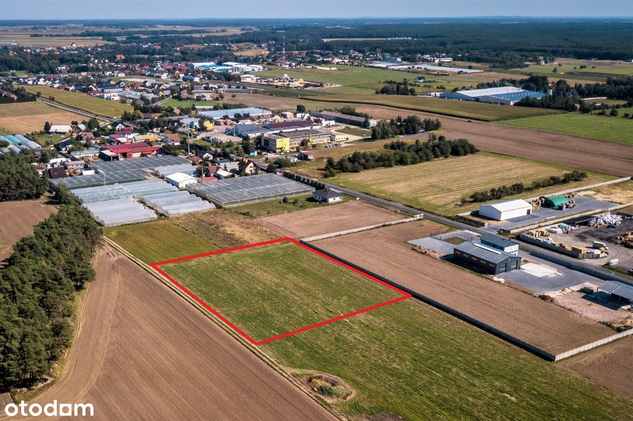 Działka inwestycyjna 3.000 m2 - Włoszakowice