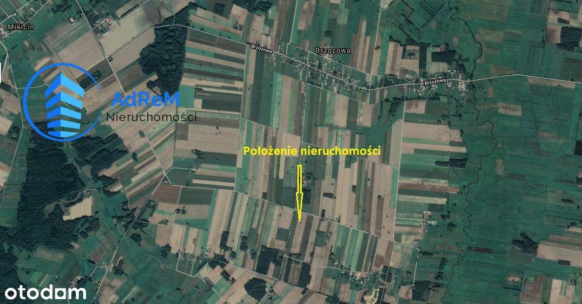 1,91 ha ziemi rolnej w Brzozowa