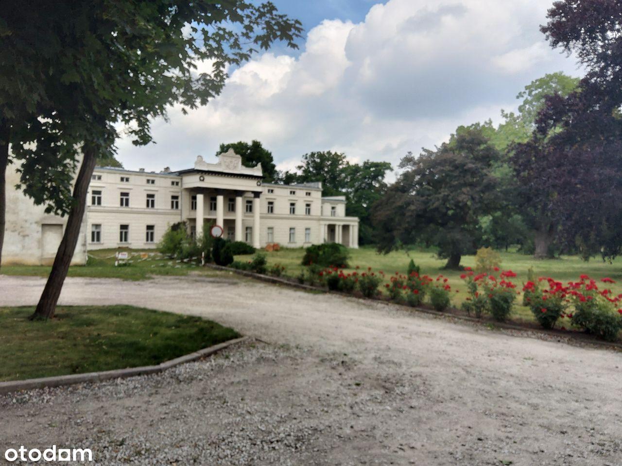 Zespół pałacowy gmina Czempiń 20 min. od Poznania