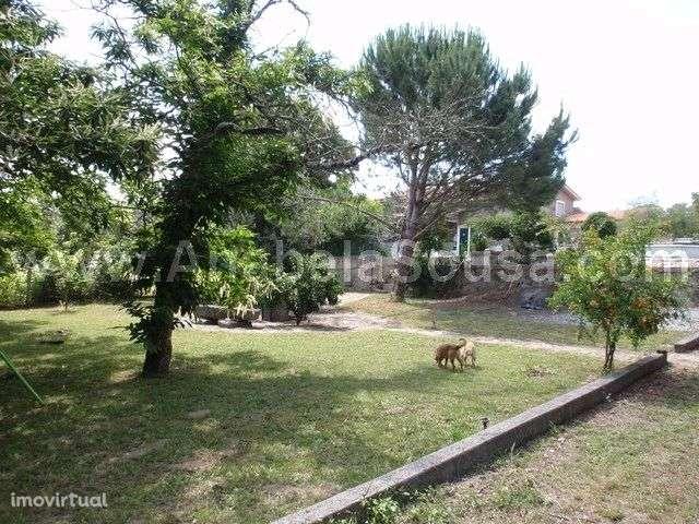 Quintas e herdades para comprar, Viseu - Foto 9