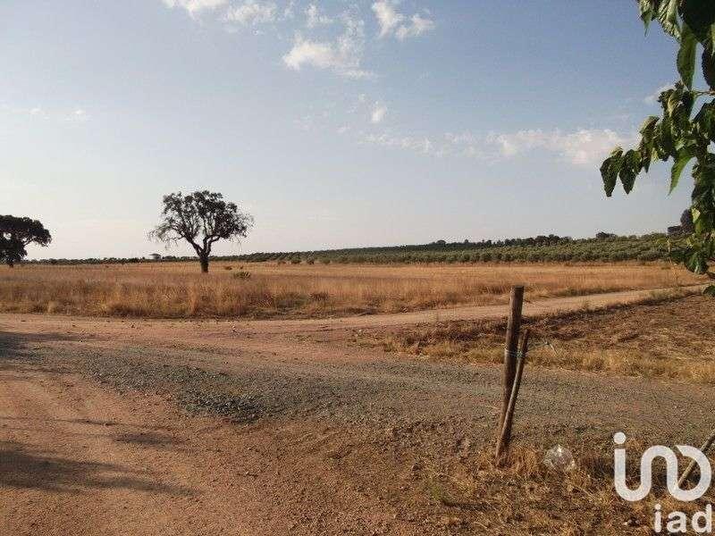 Terreno para comprar, Fronteira - Foto 2