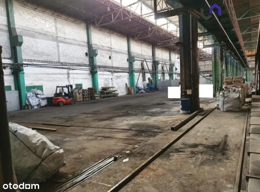 Hala/Magazyn, 1 000 m², Bytom