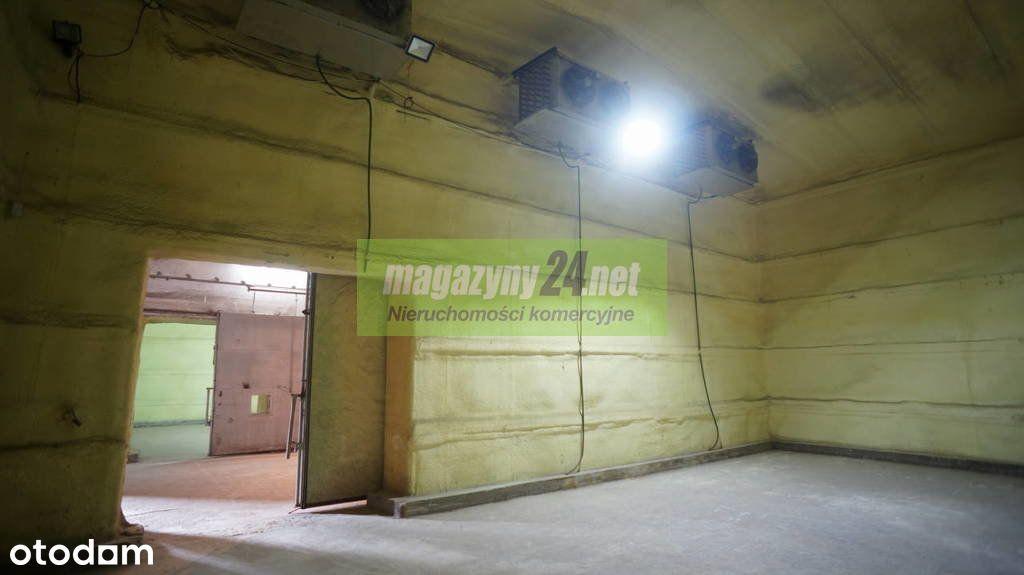 Magazyn chłodnia 300 m2 Lesznowola