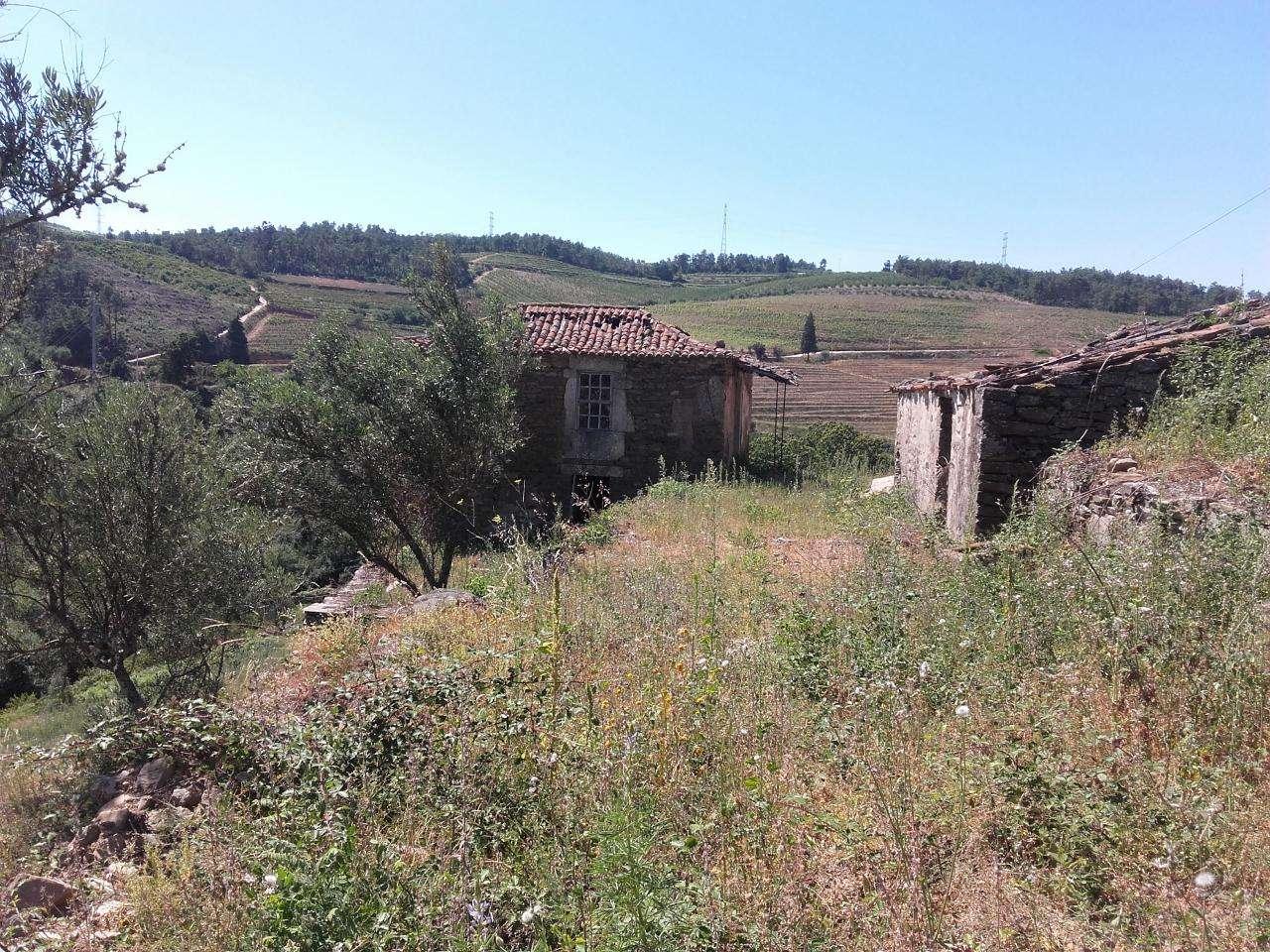 Quintas e herdades para comprar, Armamar - Foto 14