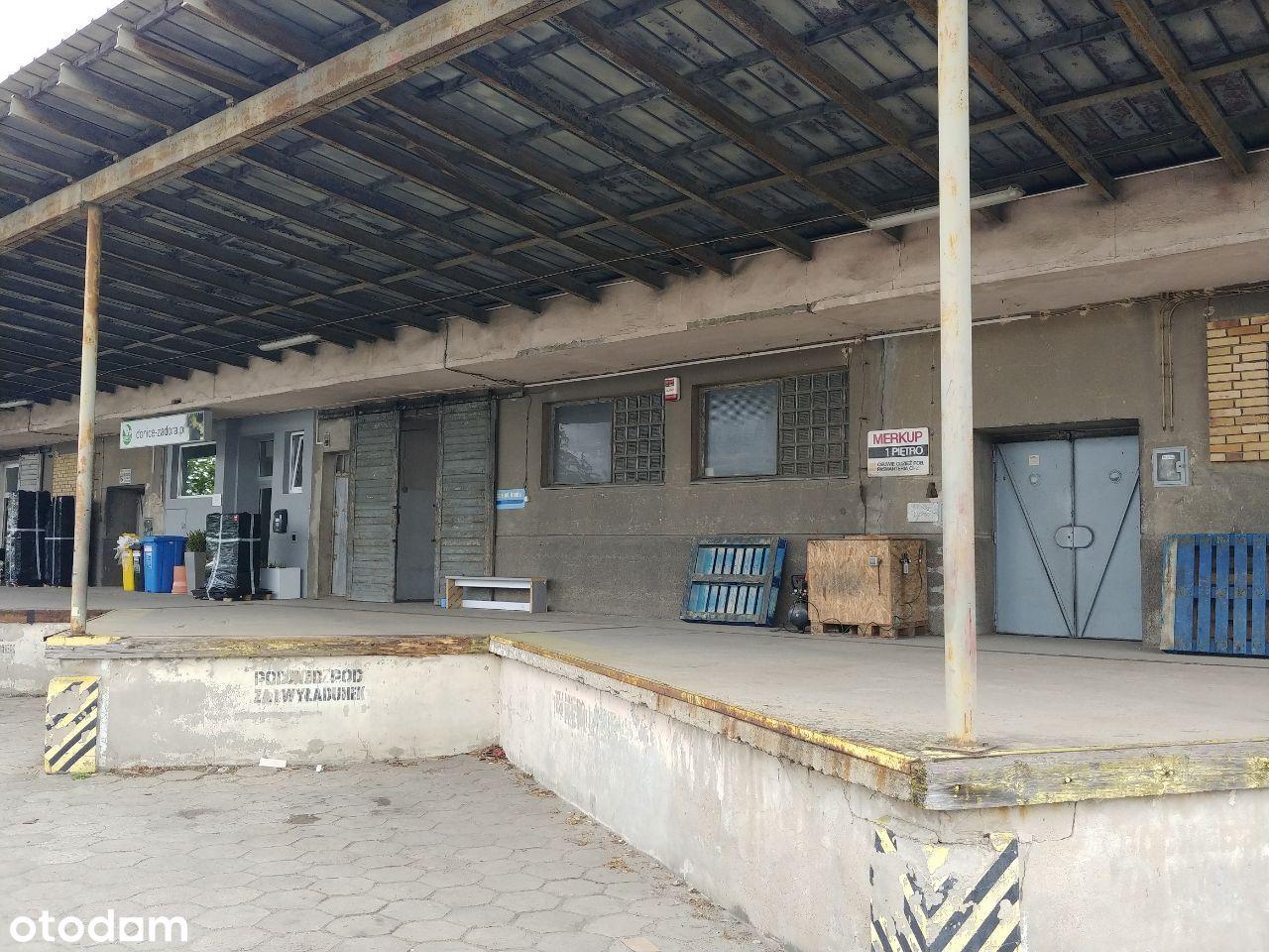 Magazyn 150 m2 Głogowksa 218 Bezpośrednio