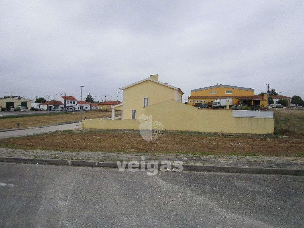 Terreno para comprar, Romeira e Várzea, Santarém - Foto 3