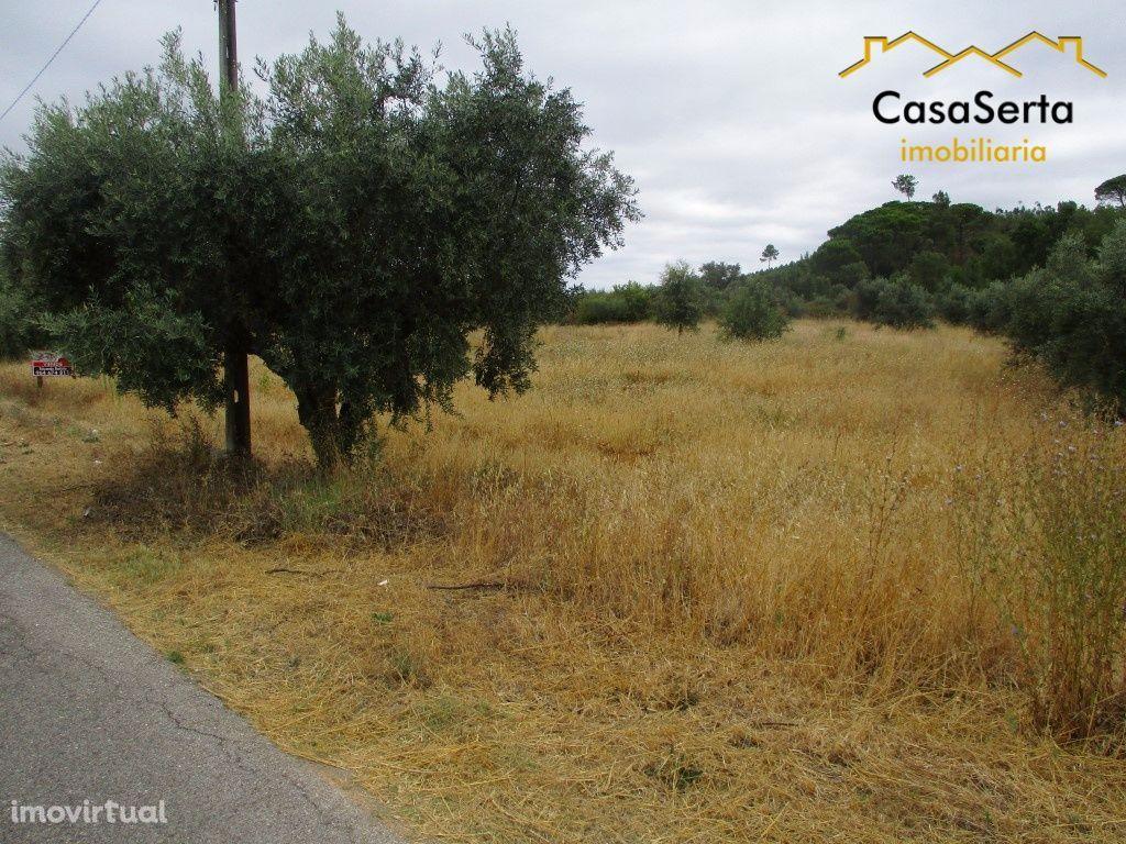 Terreno para comprar, Abrantes (São Vicente e São João) e Alferrarede, Abrantes, Santarém - Foto 5