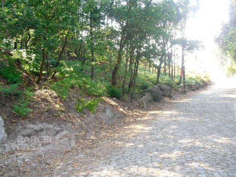 Terreno para comprar, Viatodos, Grimancelos, Minhotães e Monte de Fralães, Braga - Foto 2