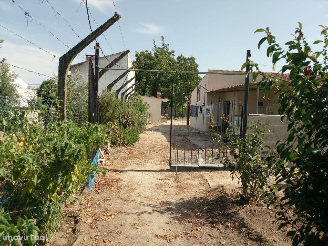 Terreno para comprar, Pego, Abrantes, Santarém - Foto 14