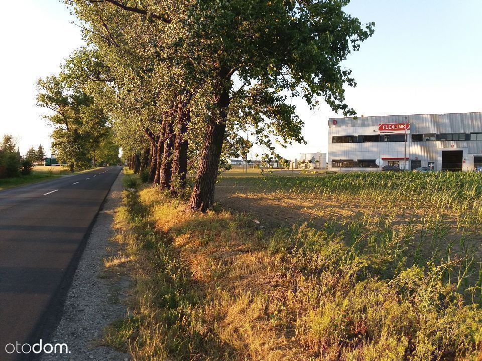 Działka, 22 708 m², Plewiska