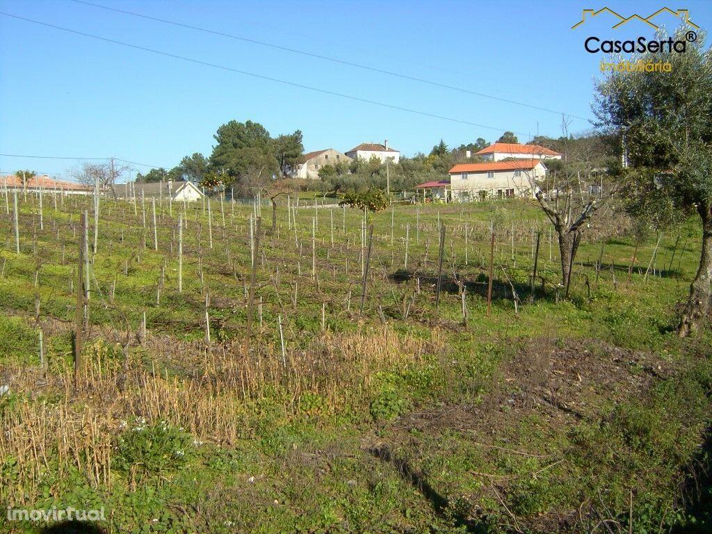 Terreno para comprar, Carvalhal, Sertã, Castelo Branco - Foto 3