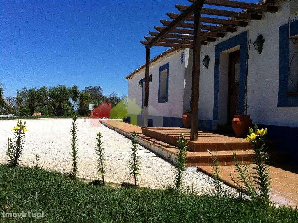 Quintas e herdades para comprar, Aljustrel e Rio de Moinhos, Aljustrel, Beja - Foto 1