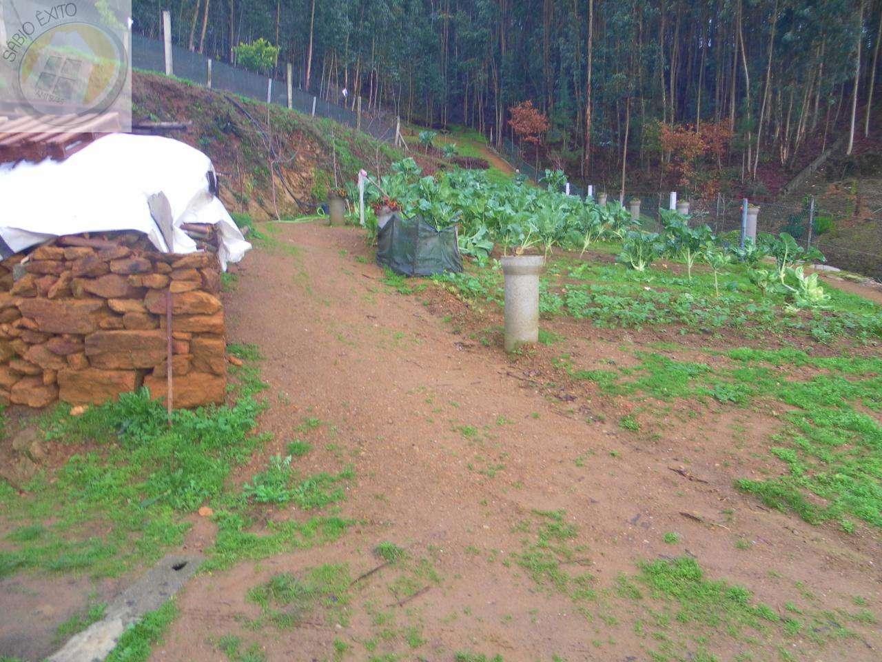 Terreno para comprar, Canedo, Vale e Vila Maior, Santa Maria da Feira, Aveiro - Foto 5