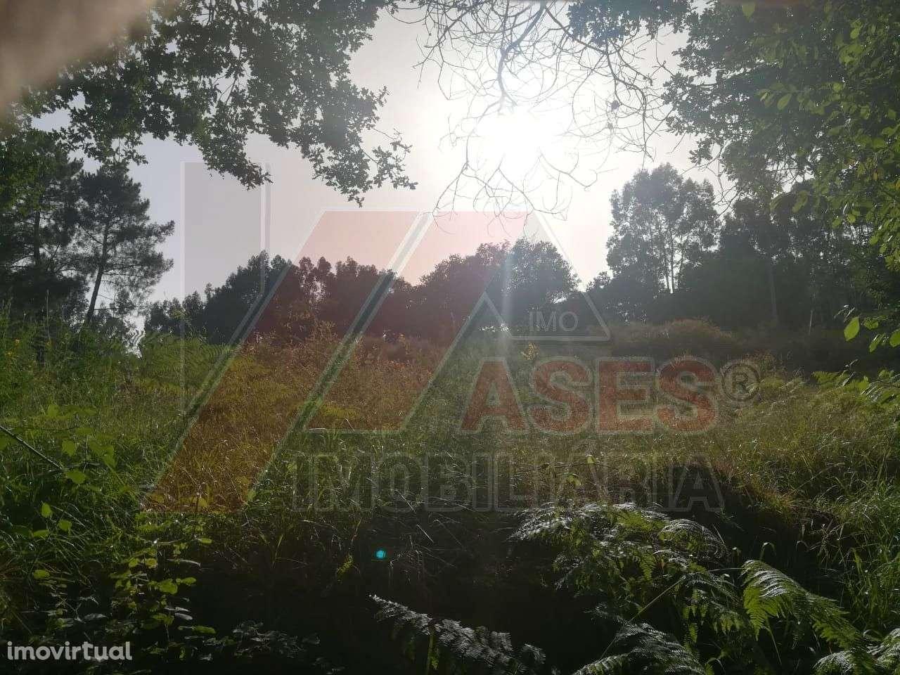 Terreno para comprar, Refojos de Basto, Outeiro e Painzela, Braga - Foto 2