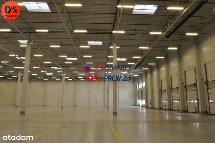 Hala/Magazyn, 3 150 m², Gądki
