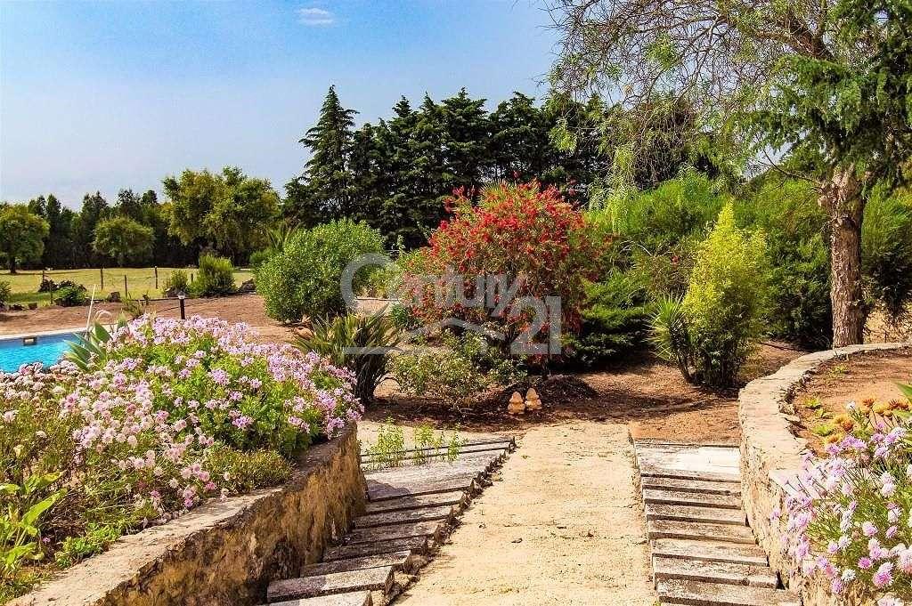 Quintas e herdades para comprar, Santiago do Cacém, Santa Cruz e São Bartolomeu da Serra, Setúbal - Foto 37